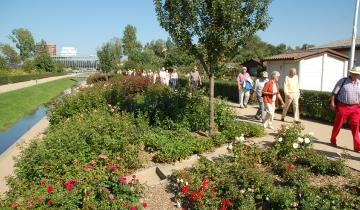 Landschafts- und Gartenbau